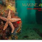 Feb Mar 15 cover
