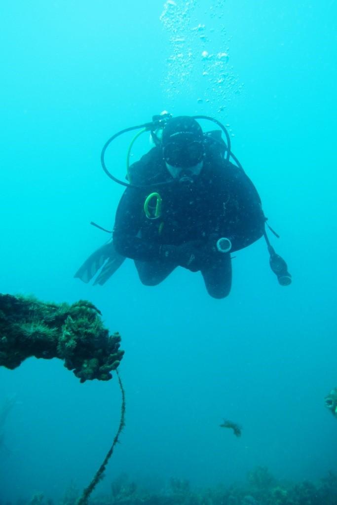 barges diver