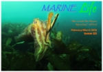 Marine Life Feb March 2013
